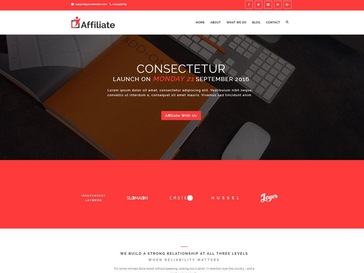 Affiliate best WordPress theme