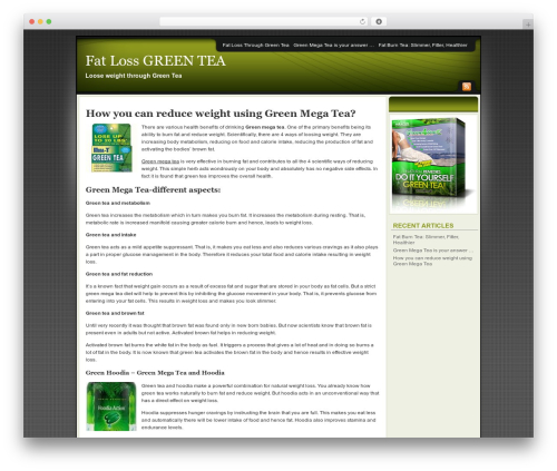 Best WordPress theme Affiliate Internet Marketing theme - fatlossgreentea.com