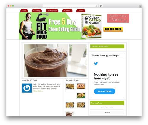 Free WordPress googleCards plugin - fitdudefood.com