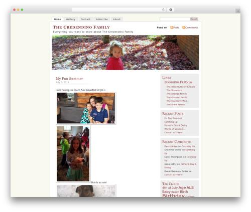 MistyLook template WordPress - thecredendinos.com