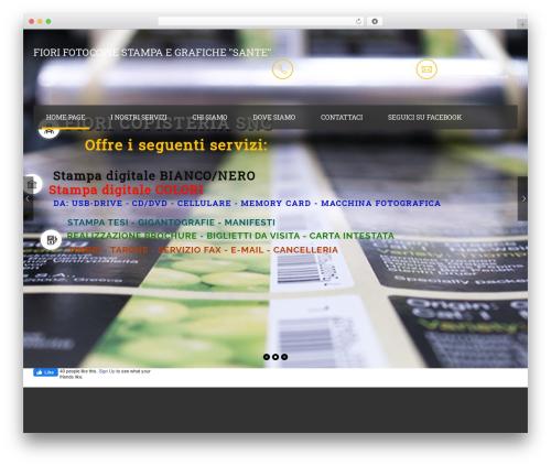 Theme WordPress handyman - fiorisnc.it