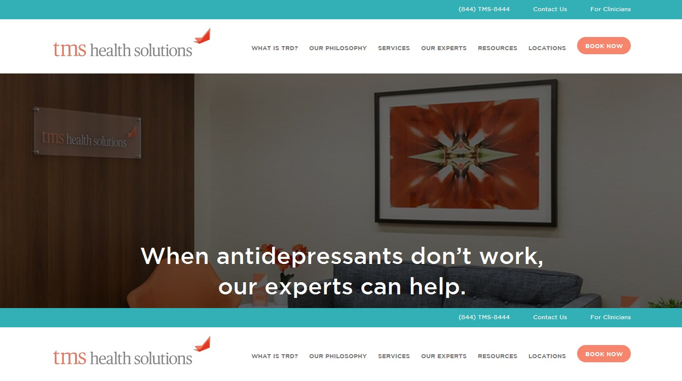 TMS Theme WordPress theme