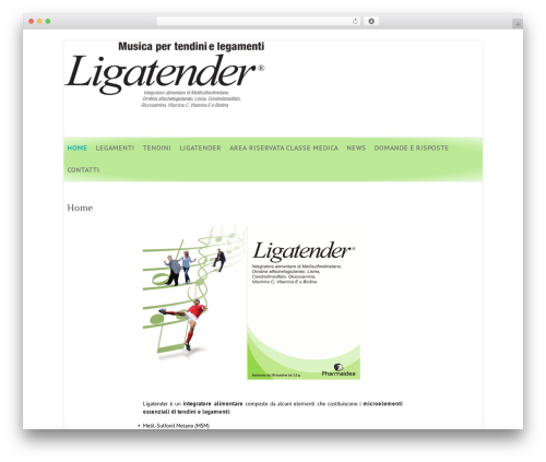 Attitude free WP theme - ligatender.it
