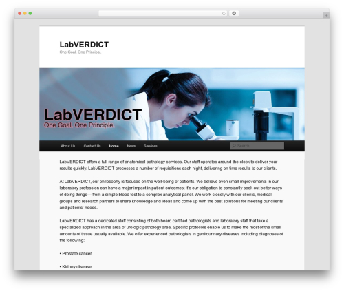 Twenty Eleven best free WordPress theme - labverdict.com