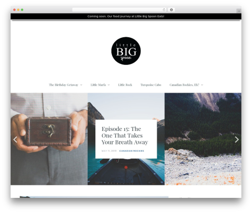 WP theme Carbis - littlebigspoon.com