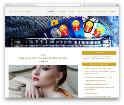 Best eCommerce WordPress shopping theme by DiThemes