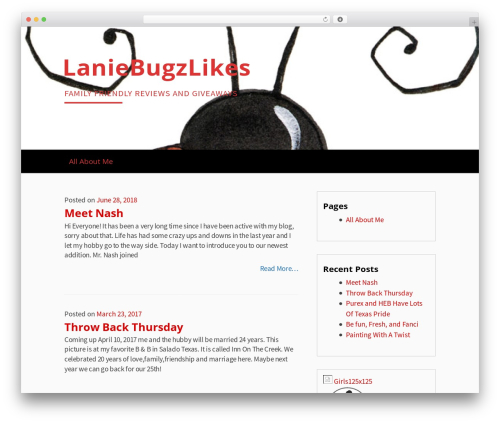 WordPress instagram-picture plugin - laniebugzlikes.com
