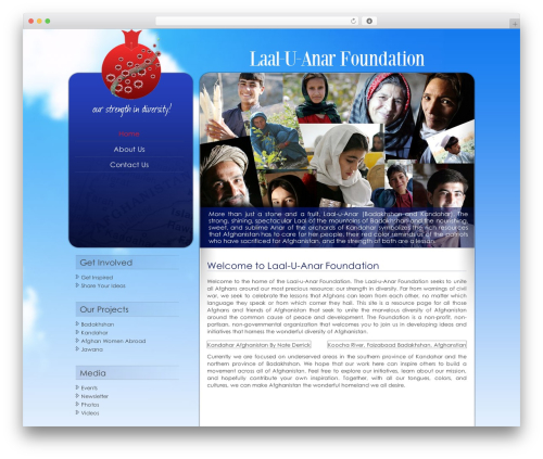 WordPress theme laal_u_anar_foundation - laaluanar.org