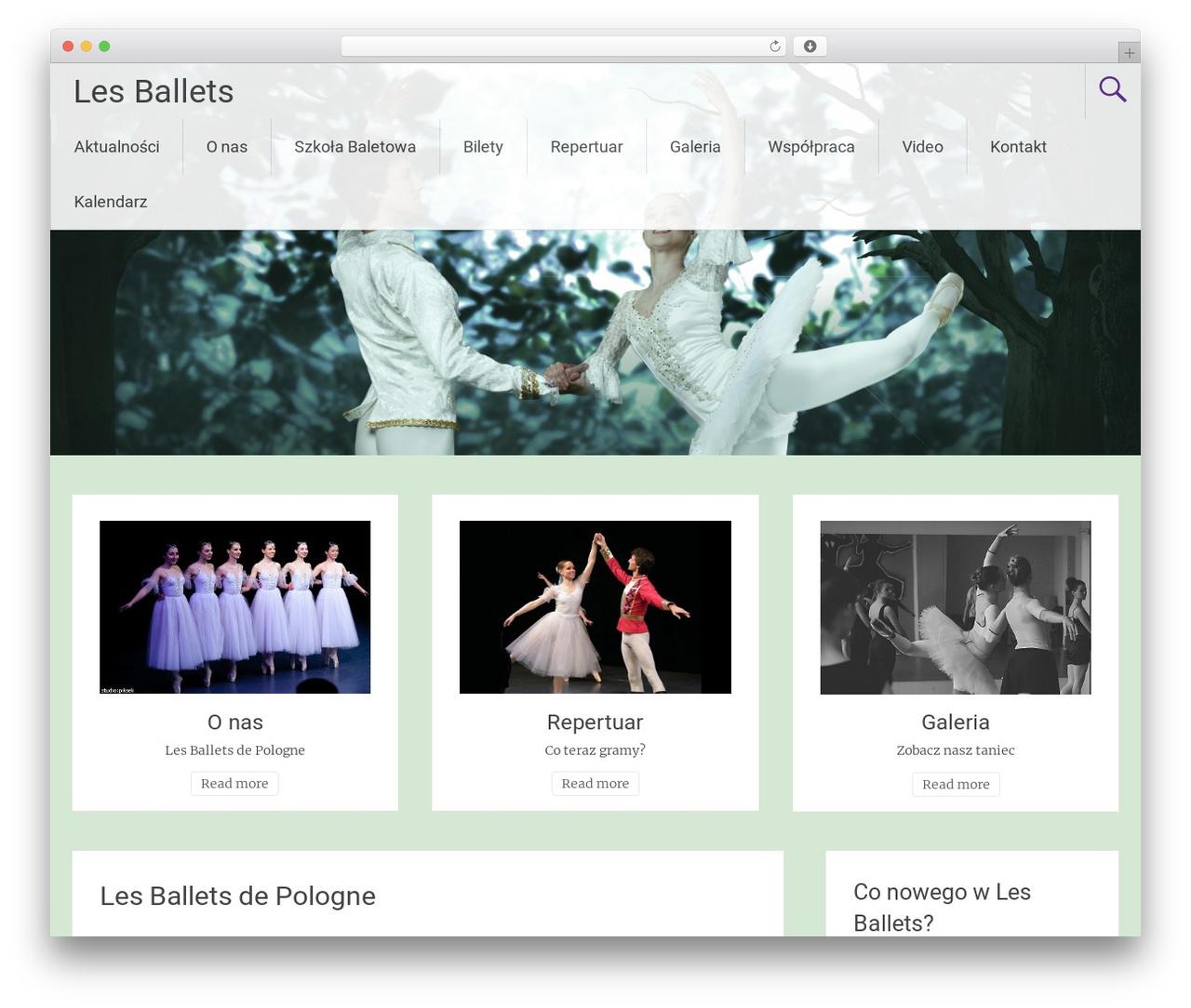 Theme WordPress Radiate - lesballets.pl/les-ballets-de-pologne