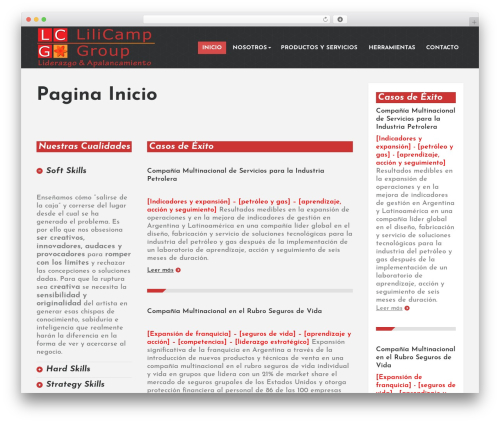PressCore top WordPress theme - lilicampgroup.com.ar