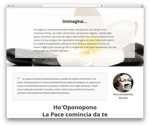 Writee WordPress website template - lapacecominciadate.com
