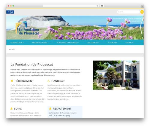 Firmness WordPress theme download - lafondationdeplouescat.com