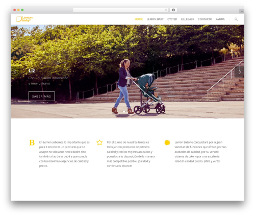 Salient WordPress theme - lemon-baby.com