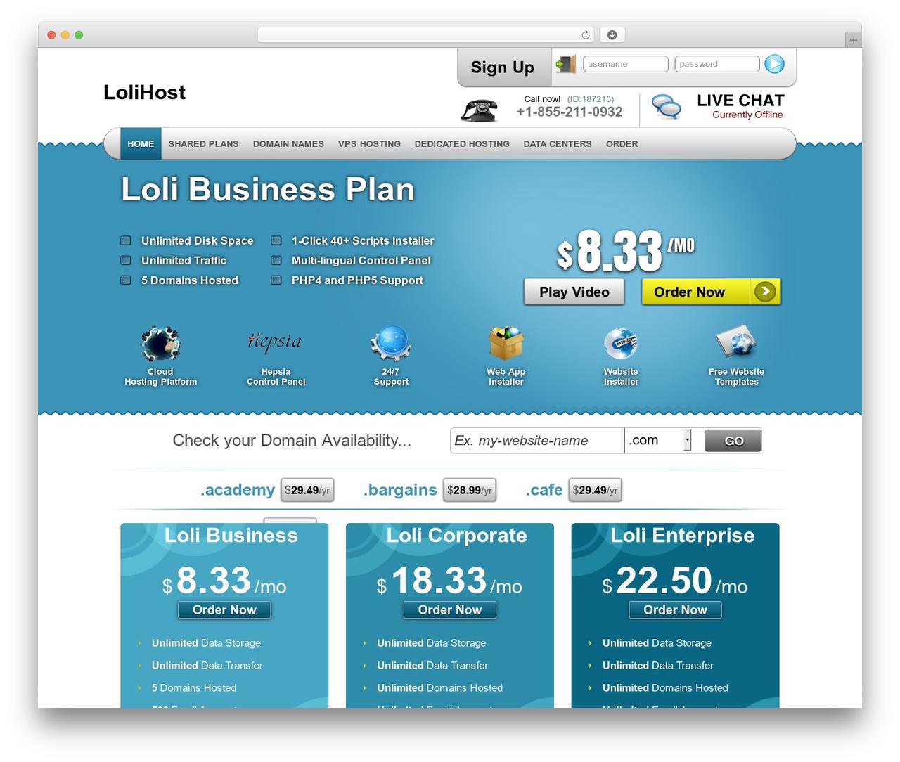 Simply Elegant WordPress website template - lolihost.net