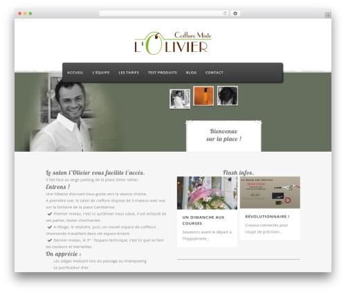 Bridge theme WordPress - lolivier-chantilly.com