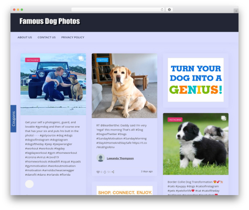 Addictive Site Builder top WordPress theme - famousdogphotos.com