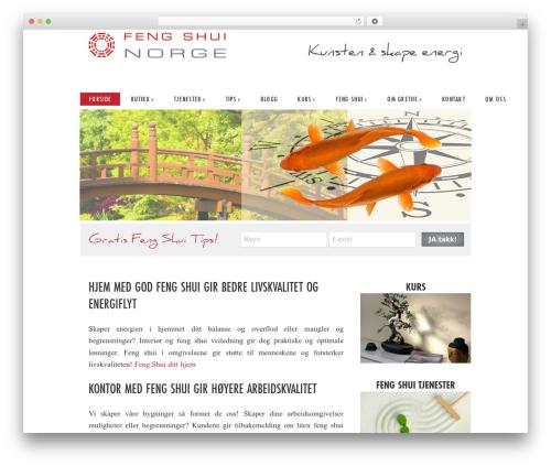 Dynamik-Gen template WordPress - fengshuinorge.no