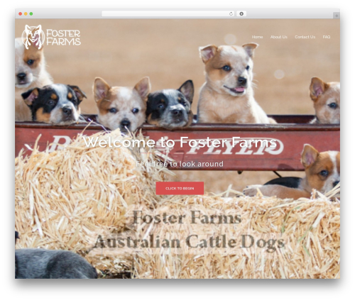 Sydney premium WordPress theme - fosterfarmsdogs.com