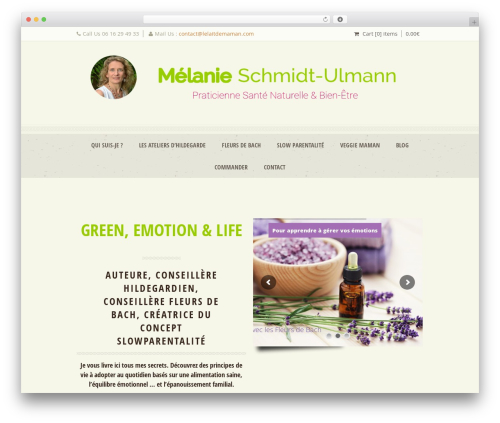 WordPress theme Dream Spa - lelaitdemaman.com