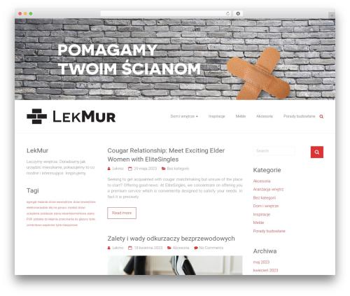 Ample WordPress website template - lekmur.pl