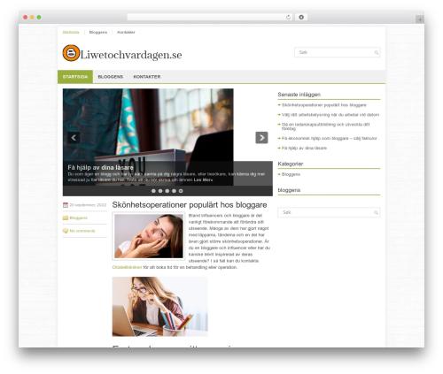 FinanceBlog theme WordPress - liwetochvardagen.se