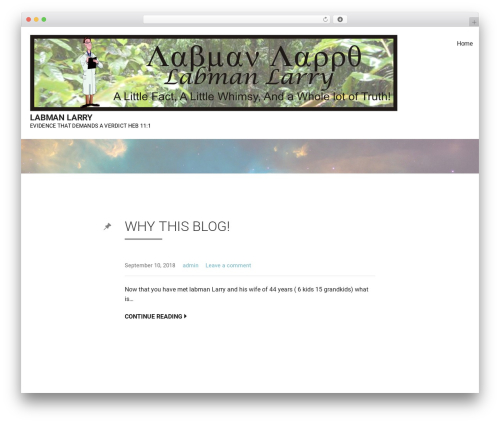 Best WordPress theme Mins - labmanlarry.com