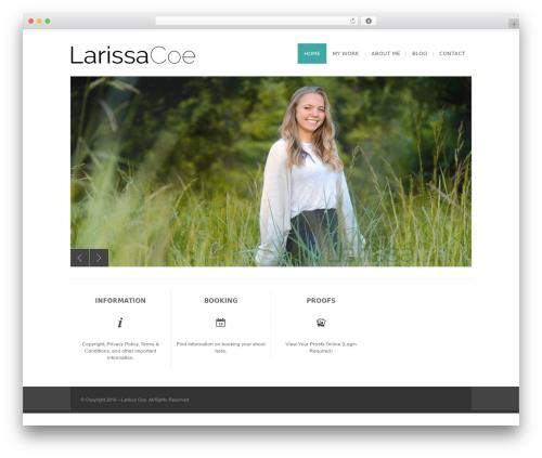 Free WordPress Image Watermark plugin - larissacoe.com