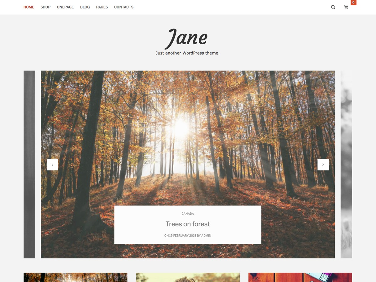 Jane Lite WordPress theme