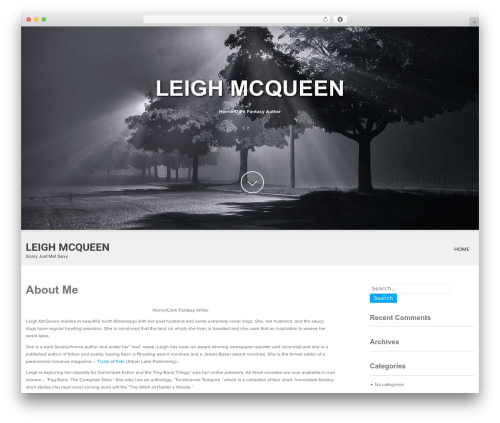 Template WordPress SKT White - leighmcqueen.com