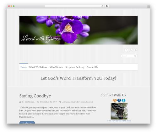 WordPress author-info-widget plugin - lacedwithgrace.com