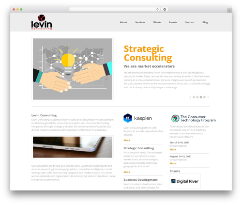 Leverage best WordPress template - levinconsulting.com