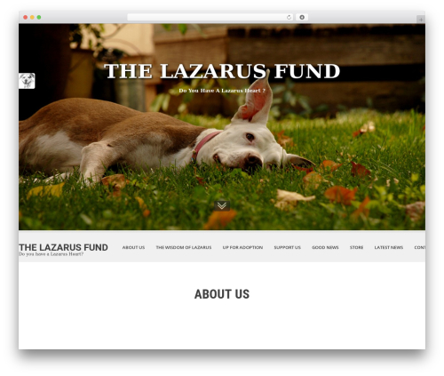 SKT White premium WordPress theme - lazfund.org