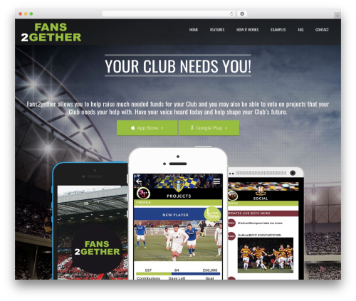 Applay WordPress theme design - fans2gether.com