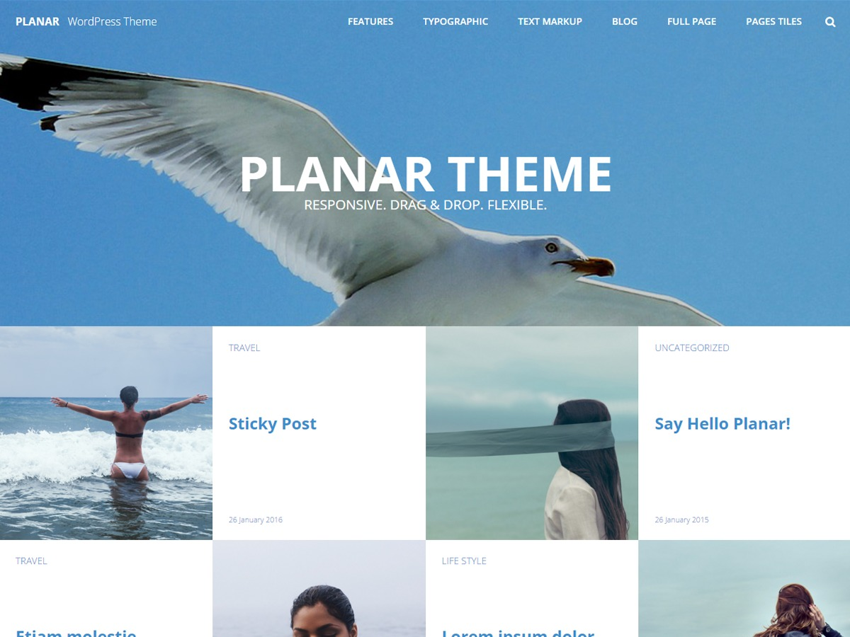 Planar Lite free WordPress theme
