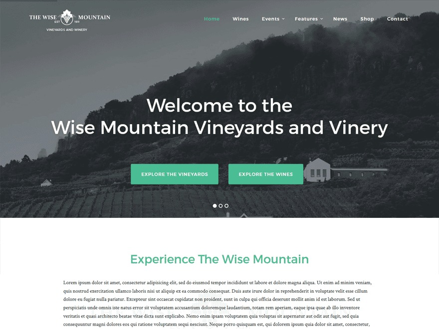 Wise-Mountain Pro WordPress theme