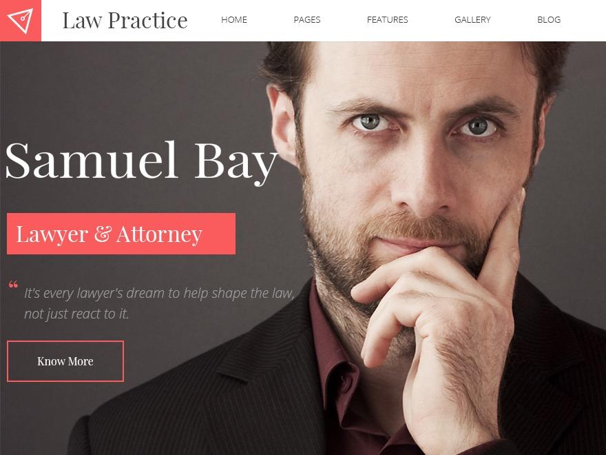 WordPress website template Law Practice