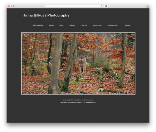 WP theme Photography PRO - fotojirina.cz