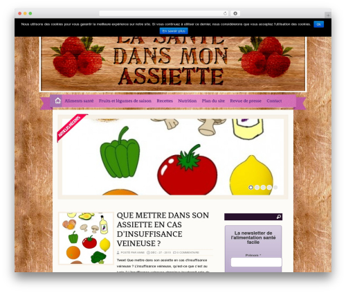 Best WordPress theme Zylyz - lasantedansmonassiette.com