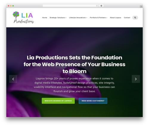 Businessx best free WordPress theme - liaproductions.com