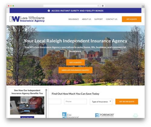 BrightFire Stellar WordPress template for business - leewintersagency.net