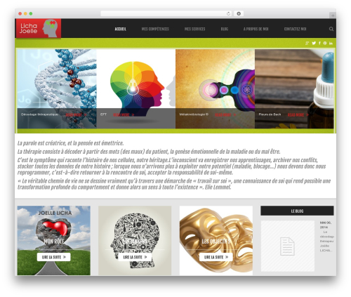 WordPress theme cherry - lichajoelle.fr