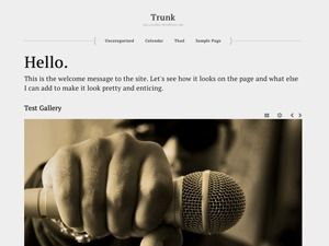 Burnikel best WordPress template