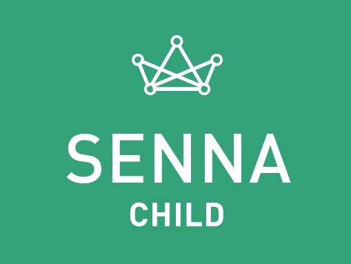 Senna Child Theme personal blog WordPress theme