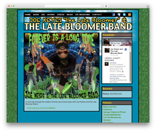 WordPress smartsimian-queries plugin - latebloomerband.com
