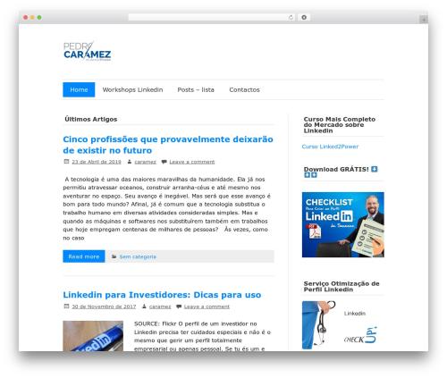 zeeFlow WP theme - linkedportugal.com