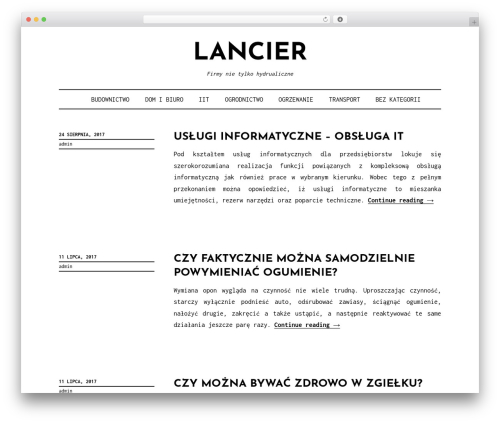 Didi Lite business WordPress theme - lancier-hydraulik.pl