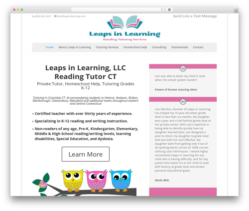 Divi top WordPress theme - leapsinlearning.com