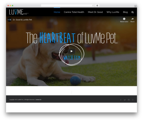 Avada best WordPress template - luvmepet.com