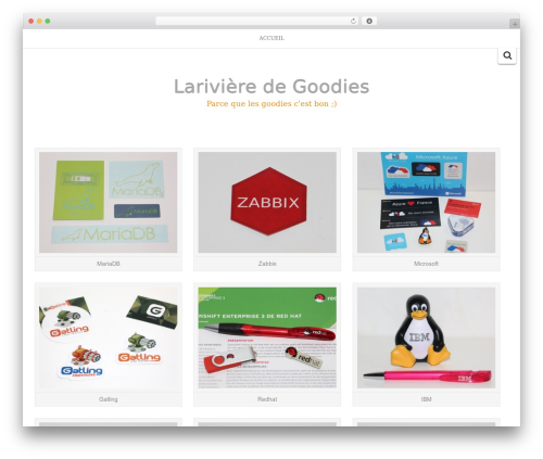 Best WordPress template Inkzine - larivieredegoodies.com