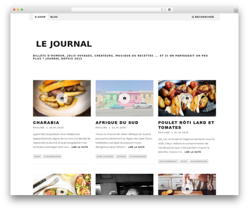 15zine (Share On Theme123.Net) WordPress page template - fere.fr